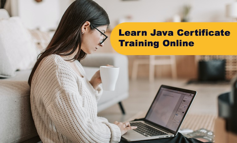 Choose java for beginners